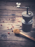 Spoon with ground cloves and pepper Stock Photography
