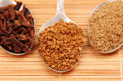 Spoon of instant coffee and spices. Stock Images
