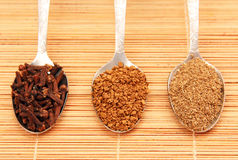 Spoon of instant coffee and spices. Royalty Free Stock Photos