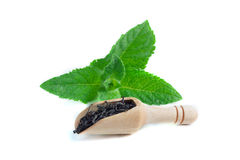 Spoon with leaves tea and fresh green mint leaf isolated on white background.  Stock Photography