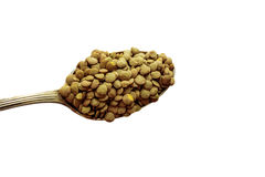 A spoon with lentils Stock Image