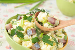 Spoon with mashed potatoes and herring Stock Images