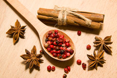 Spoon with a mixture of grains of pepper, cinnamon and star anis Stock Images