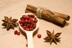 Spoon with a mixture of grains of pepper, cinnamon and star anis Stock Photography