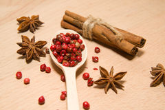Spoon with a mixture of grains of pepper, cinnamon and star anis Royalty Free Stock Photos
