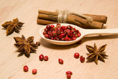 Spoon with a mixture of grains of pepper, cinnamon and star anis Royalty Free Stock Photography