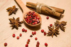 Spoon with a mixture of grains of pepper, cinnamon and star anis Stock Image