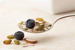 Spoon of muesli cereal stock image