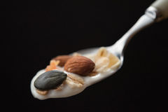 Spoon with a muesli and cereal Stock Image