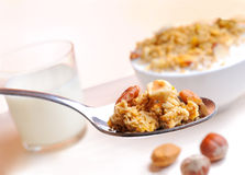 Spoon with muesli and nuts Stock Photography