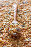 Spoon of muesli. Selective focus Royalty Free Stock Images