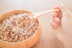 Spoon of multi whole jasmine rice Stock Photos