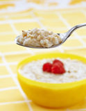 Spoon of oats porridge Royalty Free Stock Photography