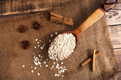 A spoon with oats Royalty Free Stock Image