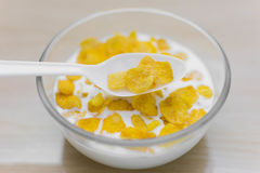 Spoon over Bowl of corn flakes for morning breakfast on wood background. Yellow corn flakes on wood background for morning breakfast Royalty Free Stock Photography