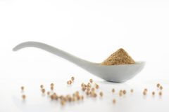 A Spoon Of Pepper Powder. With pepper in mood shoot Royalty Free Stock Image