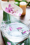 Spoon with petals Royalty Free Stock Photos