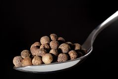 Spoon with pile of allspice, Jamaica pepper or pimenta Royalty Free Stock Photos