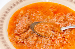 Spoon in the plate with minced meat and rice Stock Photography