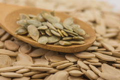 Spoon with pumpkin seed. Big cooking spoon with organic pumpkin seeds. Shallow depth of field Royalty Free Stock Photos