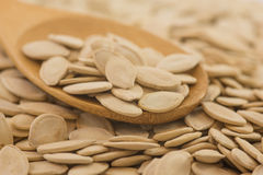Spoon with pumpkin seed. Big cooking spoon with organic pumpkin seeds. Shallow depth of field Stock Photos