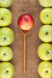 Spoon with red apple lying on the sackcloth among green apples Royalty Free Stock Image