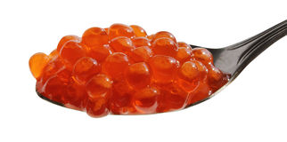 Spoon of red caviar Stock Images