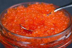 Spoon of red caviar in a glass jar, selective focus Royalty Free Stock Photography