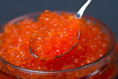 Spoon of red caviar in a glass jar, selective focus, close-up Royalty Free Stock Image