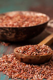 The spoon with red rice Stock Photography