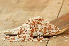 Spoon rice mixture on rice Stock Photos