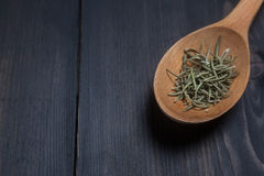Spoon of rosemary Stock Images