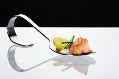 Spoon with salmon Stock Photos