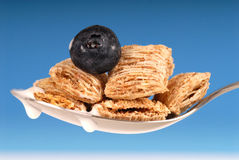 Spoon of shredded wheat cereal with blueberry Royalty Free Stock Photos