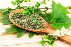 Spoon with spices and green leaves Stock Image