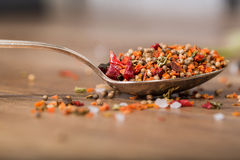 Spoon with spices on the table, close-up Royalty Free Stock Photos
