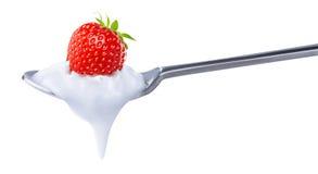 Spoon of strawberry yoghurt Royalty Free Stock Photo