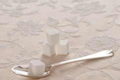 Spoon and Sugar Cubes on Elegant Tablecloth Royalty Free Stock Image