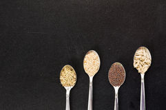 Spoon of sunflower sesame fennel mustard seeds for macrobiotic food Stock Photos