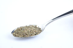 Spoon with thyme Royalty Free Stock Photos