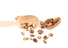 Spoon with walnuts and brazil nuts. Royalty Free Stock Photos