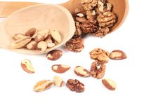 Spoon with walnuts and brazil nuts. Stock Photography