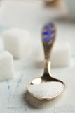 Spoon of white sugar Royalty Free Stock Photos