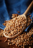 Spoon with whole wheat grains Stock Photo
