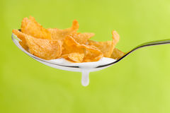 Spoon With Corn Flakes On Green Background Royalty Free Stock Photos