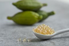 Free Spoon With Fresh Raw Green Finger Lime Caviar Stock Images - 160755044