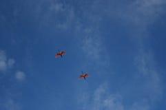 Spoonbills rosados en vuelo Imágenes de archivo libres de regalías