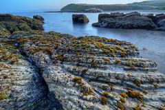 Spooners Cove Stock Image