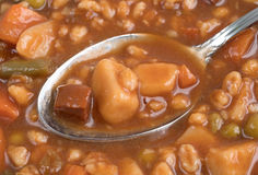 Spoonful of beef stew Stock Image