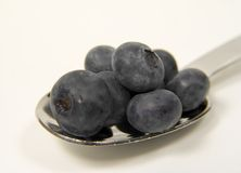 Spoonful of Blueberries Stock Photo